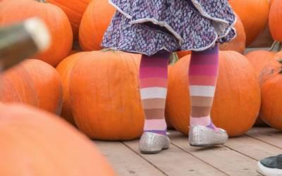 Redmond Events: Harvest Festival at Prairie Crossing